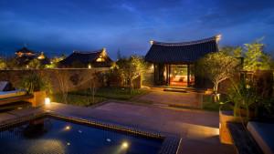 Lijiang-Banyan1