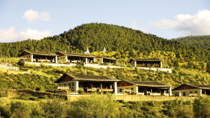 Shangri-La-Ringha-Banyan-Ext