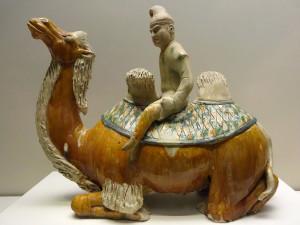 Tang-Zijde-kameel01