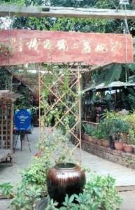 Jinghong-Shawanli1